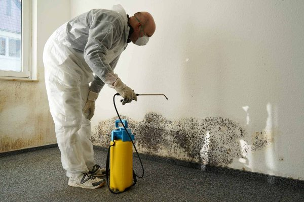 Mold Removal Houston Texas Process